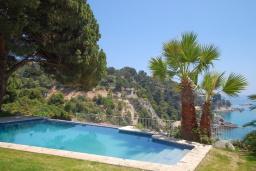 Бассейн. Испания, Тосса-де-Мар : Комфортабельная вилла с частным доступом к прекрасному пляжу Кала-Санта-Мария-де-Ллорель, с 4 спальнями,3 ванными комнатами и частным бассейном