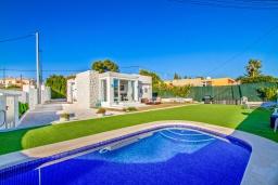 Бассейн. Испания, Альфас-дель-Пи : Современная вилла в стиле бунгало с собственным бассейном, находится в городе Альфас-дель-Пи, имеет 3 спальни и 1 ванную комнату