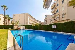 Бассейн. Испания, Альфас-дель-Пи : Небольшая уютная квартира, расположенная недалеко от пляжа, с 2 спальнями, 2 ванными комнатами, частной парковкой в гараже и террасой с видом на на горы и Средиземное море.