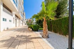 Территория. Испания, Альфас-дель-Пи : Небольшая уютная квартира, расположенная недалеко от пляжа, с 2 спальнями, 2 ванными комнатами, частной парковкой в гараже и террасой с видом на на горы и Средиземное море.