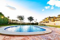 Бассейн. Испания, Мучамель : Светлая и просторная квартира расположена всего в паре минут езды от уютного городка Мучамель, имеет 3 спальни, 2 ванные комнаты и террасу на крыше с видом на Средиземное море