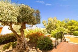 Вид. Испания, Ла-Нусия : Просторная, свежая, прекрасная вилла, с 4 спальнями, 3 ванными комнатами, бассейном и террасой с видом на Средиземное море и горы