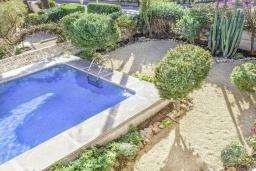 Бассейн. Испания, Ла-Нусия : Просторная красивая вилла расположена в городе Ла-Нусия, имеет 4 спальни, 2 ванные комнаты, частный бассейн и террасу на крыше с великолепным видом на Альбир и Средиземное море