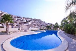 Бассейн. Испания, Мучамель : Светлая и просторная квартира расположена в паре минут езды от прекрасного города Мучамель, 3 спальни, 1 ванная комната, терраса на крыше с видом на море