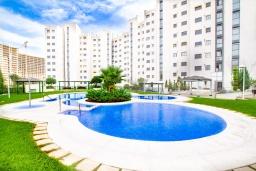 Бассейн. Испания, Бенидорм : Комфортабельная квартира расположенная в очаровательном районе рядом с морем, просторная и светлая, с 1 спальней, 1 ванной комнатой и большой террасой