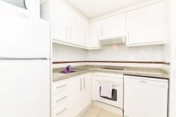 Кухня. Испания, Бенидорм : Комфортабельная квартира расположенная в очаровательном районе рядом с морем, просторная и светлая, с 1 спальней, 1 ванной комнатой и большой террасой