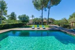Бассейн. Испания, Капдепера : Впечатляющая вилла с бассейном и садом