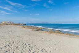 Ближайший пляж. Испания, Сон-Серра-де-Марина : Прекрасное шале с садом и несколькими террасами