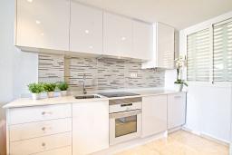 Кухня. Испания, Альбир : Прекрасная квартира, расположенная в центре Альбира всего в 100 метрах ходьбы от пляжа, 4 этаже в многоквартирном доме с лифтом, 1 спальня, 1 ванная комната, общий бассейн, кондиционер и Wi-Fi