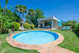 Бассейн. Испания, Маррачи : Стильное шале с частным бассейном и садом