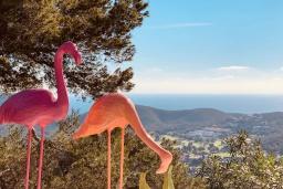 Территория. Испания, Санта-Эулалия-дель-Рио : Потрясающая вилла для большой компании на знаменитом острове Ибица. Большой бассейн с лаундж-зоной, зона барбекю, джакузи, 10 спален со своей ванной комнатой, бесплатная парковка, wi-fi