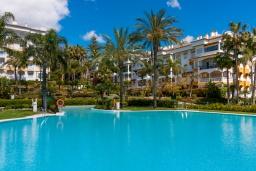 Бассейн. Испания, Марбелья : Фантастические апартаменты с детской площадкой, теннисным кортом, роскошным бассейном и гаражом в 400 м от пляжа Касабланка в городе Марбелья, 3 спальни, 2 ванные комнаты и бесплатный Wi-Fi.