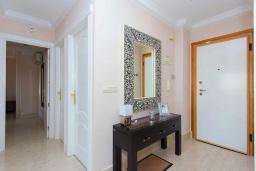 Коридор. Испания, Торревьеха : Просторная квартира с 2 спальнями и 2 ванными комнатами, всего в 500 метрах от потрясающих белых песчаных пляжей.