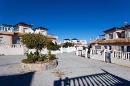 Территория. Испания, Сьюдад Кесада : Красивый и недавно отремонтированный, современный таунхаус с 2 спальнями с большим угловым участком, расположенный в небольшом сообществе домов с прекрасным закрытым общим бассейном в 20 м от дома.