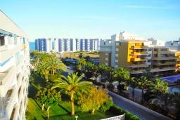 Вид. Испания, Торревьеха : Прекрасная современная квартира, со свежим ремонтом, кондиционерами и Wifi, расположена на пляже Росио-дель-Мар.