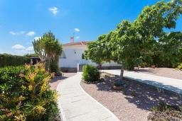 Зелёный сад. Испания, Сьюдад Кесада : Красивая и очень просторная вилла с 3 спальнями и 2 ванными комнатами с большим частным бассейном.