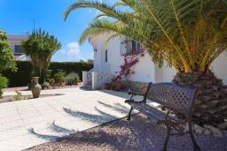Патио. Испания, Сьюдад Кесада : Красивая и очень просторная вилла с 3 спальнями и 2 ванными комнатами с большим частным бассейном.