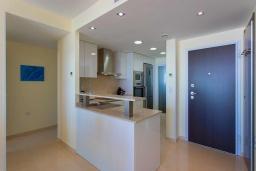 Кухня. Испания, Пунта Прима : Замечательные современные апартаменты на набережной, с 2 спальнями, 2 ванными комнатами, подземной парковкой и общим бассейном на территории комплекса