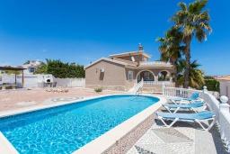 Бассейн. Испания, Сьюдад Кесада : Фантастическая отдельная вилла с большим частным бассейном и просторной территорией с пальмами, расположенная в тихом эксклюзивном районе.