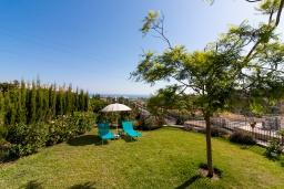 Зелёный сад. Испания, Ринкон де ла Виктория : Просторный двухэтажный дом для отдыха с подвалом, бассейном, садом и открытой парковкой рядом с полем для гольфа Aoreta  и в 5 минутах езды от пляжа Ринкон-де-ла-Виктория, 5 спален, 3 ванные комнаты, Wi-Fi.