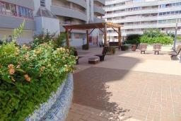 Беседка. Испания, Кальпе : Очаровательная квартира, с современным интерьером и техникой, расположенная на пляже Плайя Леванте, с 1 спальней, 1 ванной комнатой и общим бассейном на территории комплекса