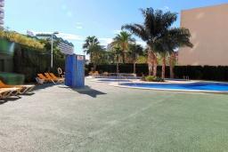 Бассейн. Испания, Кальпе : Квартира с видом на море и общими бассейнами, в непосредственной близости от пляжа в Кальпе, с 2 спальнями и 2 ванными комнатами