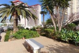 Зелёный сад. Испания, Кальпе : Красивая квартира с современным интерьером, с видом на море и пеньон в Кальпе,  всего в 100 метрах от моря и пляжа.