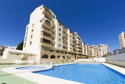 Бассейн. Испания, Кальпе : Апартаменты с видом на море и бассейy, всего в 100 метрах от моря и пляжа Калалга, с 2 спальнями и 1 ванной комнатой.